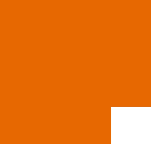 linea-naranjaInt