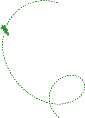 linea-verde-02